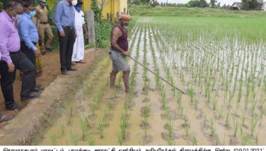 COLLECTOR_AGRICULTURE DEPARTMENT INSPECTION_09/01/2021