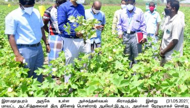 32_AGRI_COLLECTOR INSPECTION_ENCOURAGING FARMERS ON SECOND PHASE CROP CULTIVATION_31/05/2021