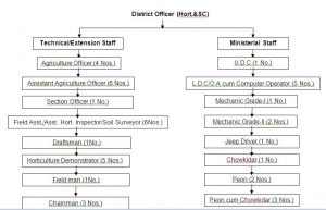 Org Chart of Hort and Soil Cons Imphal West