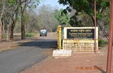 Tadoba National Park Boundary Starts
