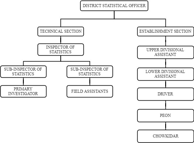 Organization Chart of DSO