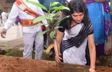 District Collector Planting Sapling in Collectorate Premises as part of World Environment Day