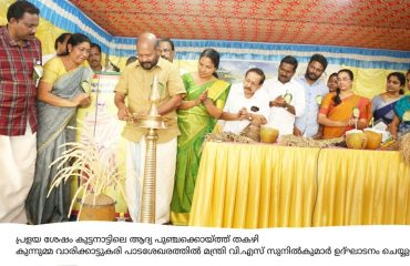 Minister V.S Sunilkumar inagurating the first punja harvasting after flood in Thakazhy kunnumma varikkattussery paddy field 2019